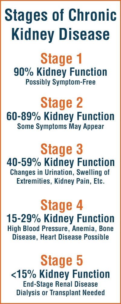 The Stages Of Chronic Kidney Disease